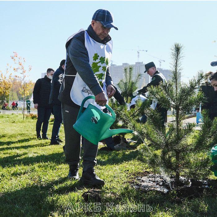 Президент Рустам Минниханов принял участие в ежегодной всероссийской акции по восстановлению лесов «Сохраним лес»